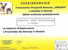 dyplom z podziekowaniem dla szkoly